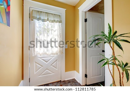 Hallway with two white doors and yellow walls with plant.