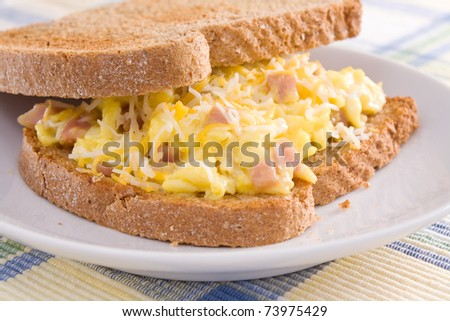 Ham, eggs, and cheese sandwiched between two slices of toasted wheat bread. - stock photo
