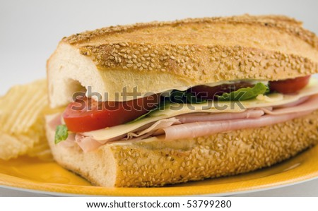 Ham & Swiss Cheese - stock photo
