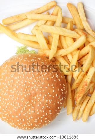 Hamburger and fries on white, on white dish, very tasty looking