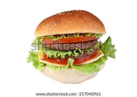 hamburger burger isolated - stock photo