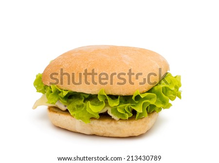 hamburger on a white background - stock photo