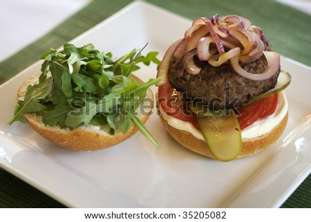 Hamburger on plate with onions and tomatos - stock photo