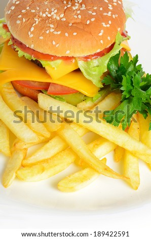 Hamburger with a french fries close up
