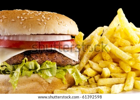 Hamburger with french fries - stock photo