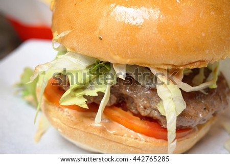 hamburger with fresh vegetables  and beef