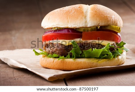 hamburger with vegetables - stock photo