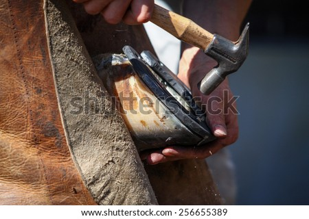 hammering the horseshoe close up