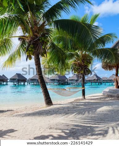Hammock at beautiful beach on Moorea island in French Polynesia - stock photo