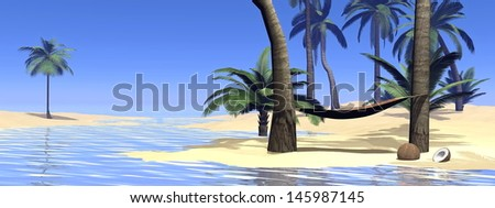 Hammock between two palm trees in tropical beach by beautiful weather - stock photo