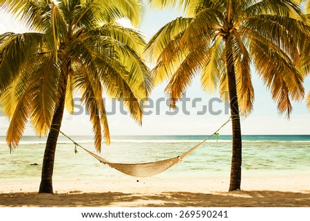 Hammock between two palm trees on the beach during sunset time - stock photo