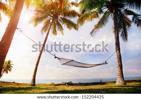 Hammock hanging on the palm trees at ocean background - stock photo