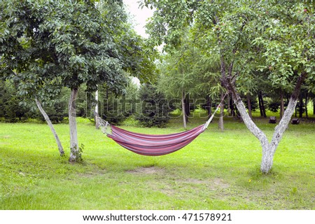 hammock in the garden