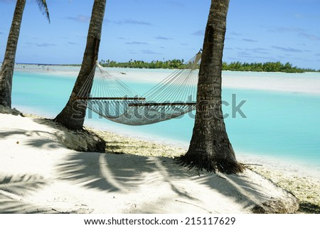 Hammock strung between two palms in the Cook Islands, South Pacific. - stock photo