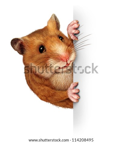 Hamster holding a blank white card with realistic fur and paws that hold and grip a billboard sign advertising and marketing an important and special message pertaining to animals and pets.