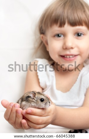 Hamster in the hands of a child, sharpness at the hands of - stock photo