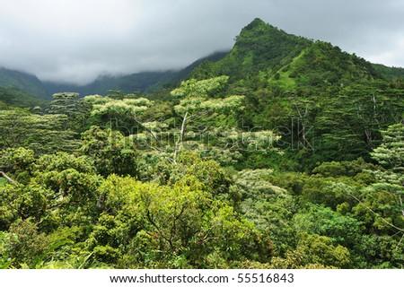Hanapepe Valley - stock photo