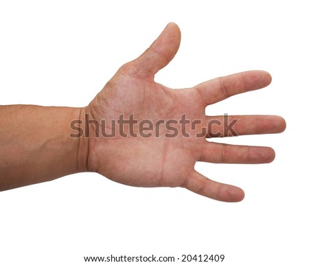 hand allocated on a white background