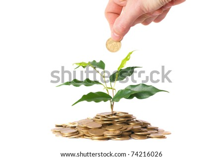 Hand and green plant growing from the coins. Money financial concept. - stock photo