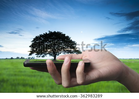 Hand and smartphone with single tree blurry on green  rice field . Concept abstract idea of sharing nature and technology, technique retouch two image land scape and hand in studio. - stock photo