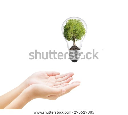 Hand and Tree in lightbulb , concept design - stock photo