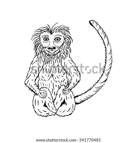 Owl Illustration Stock Illustration 206909548