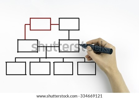hand drawing an organization chart on a white board