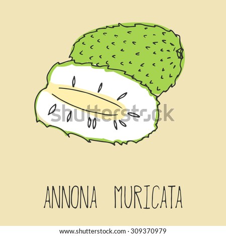 Hand drawing illustration of soursop. Fresh fruit sketch background. illustration for your design. Annona muricata - stock photo