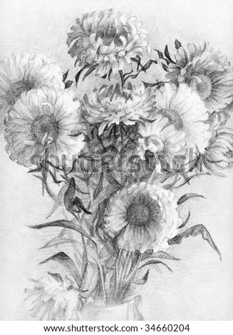 Hand-drawn bouquet of asters - stock photo