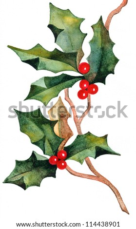 hand drawn christmas holly - stock photo