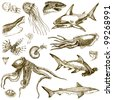 Hand-drawn collection. Marine life - SEA MONSTERS and SHARKS. (Sepia haze) - stock photo