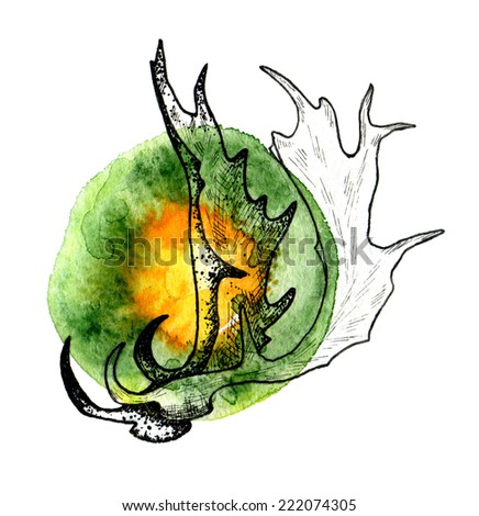 Hand drawn deer antlers within colorful watercolor spot. - stock photo