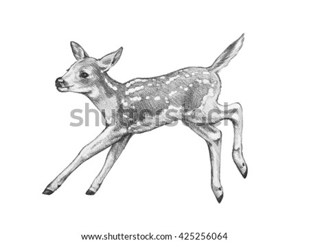 hand drawn fawn illustration young deer is playing or jumping and isolated on white background