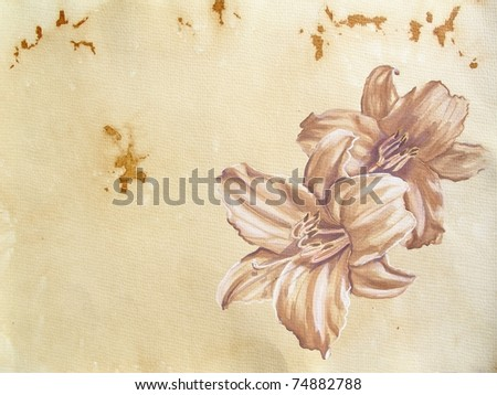 Hand-drawn lilies in watercolor - stock photo