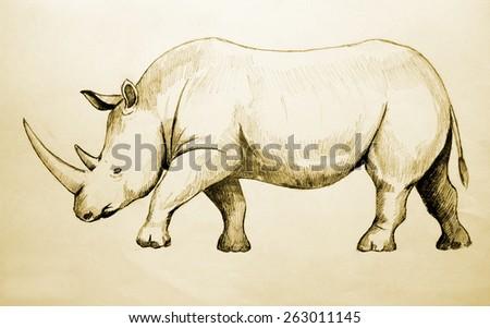 Hand drawn of a rhino, raster version - stock photo