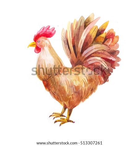 Hand drawn rooster, watercolor illustration, brown speckled hen, isolated on white background, symbol of new 2016 year