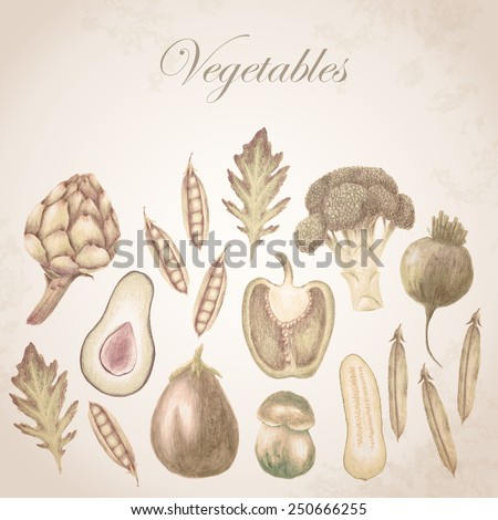 Hand drawn vegetable set with bell pepper, snap peas, arugula, broccoli, cucumber, artichoke, beetroot and half avocado and aubergine vintage style, sepia brown faded color on grunge background - stock photo