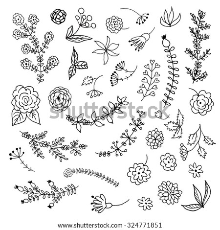 Hand Drawn vintage floral elements. Set of branches, leaves, flowers and decorative elements isolated on a white background