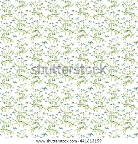 Hand drawn watercolor botanical illustration of the chamomile plant. Chamomile drawing isolated on the white background. Medical herbs illustration, herbarium. seamless pattern - stock photo