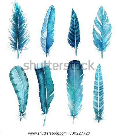 hand drawn watercolor feather set, raster illustration isolated on white. Clipping path included.