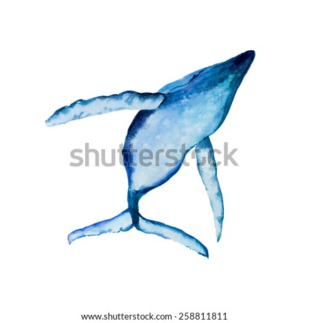 Hand drawn watercolor illustration Big Blue Whale - stock photo