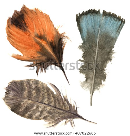 Hand drawn watercolor vibrant feather set. Boho feather style. illustration feather. isolated on white. Bird feather fly design for T-shirt, invitation, wedding card.Rustic feather. Bright color. - stock photo