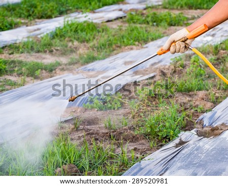 Hand Farmer are spraying pesticides fertilizers grass for agriculture - stock photo
