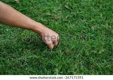hand - grass background - stock photo