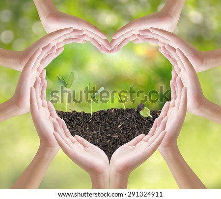 Hand heart shape and plant grow on nature background, concept design , Elements of image are furnished by NASA - stock photo
