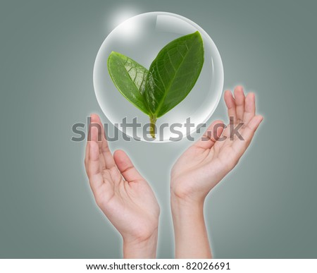 Hand hold Bubbles with green leaf inside - stock photo