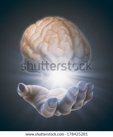 Hand holding a brain - kearning and cognition concept - stock photo