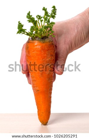 Hand holding a carrot with green sprouts isolated on a white background