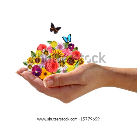 Hand holding a pile of flowers with butterflies - stock photo