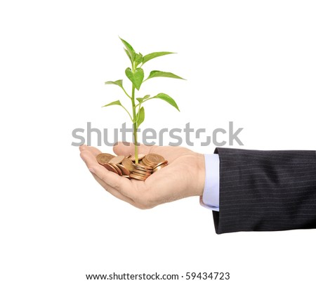 Hand holding a plant growing from pile of coins isolated against white background
